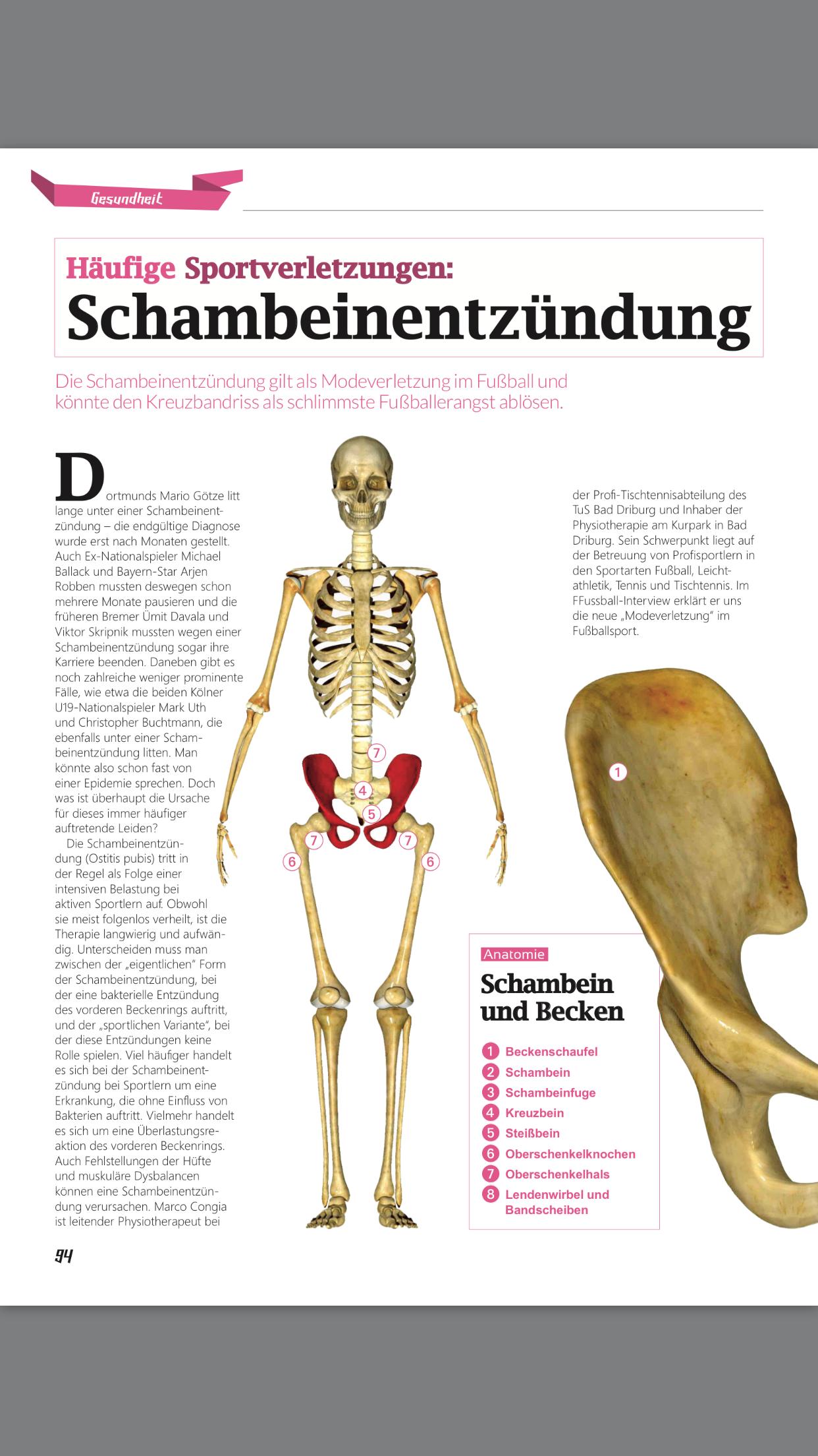Wunderbar Schwerpunkt Anatomie Bilder - Menschliche Anatomie Bilder ...