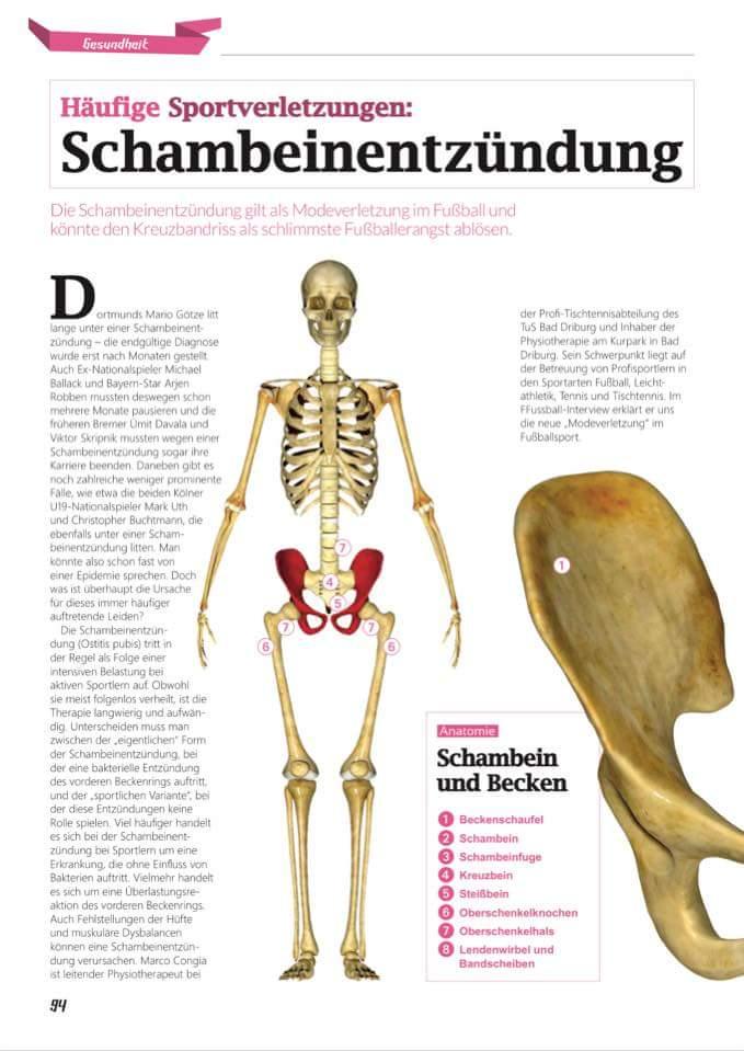 Berühmt Anatomie Oberschenkelknochen Fotos - Anatomie Ideen ...